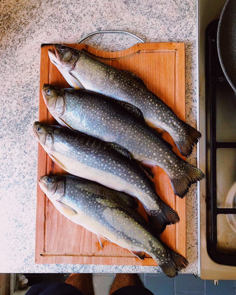 Local, Romanian trout